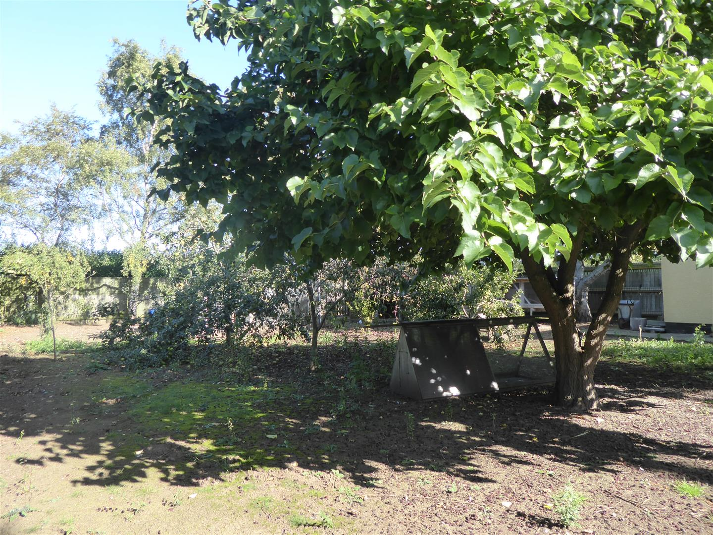REAR ORCHARD AREA